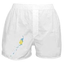 Palau Flag And Map Boxer Shorts