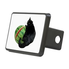 Cat with Watermelon Hitch Cover