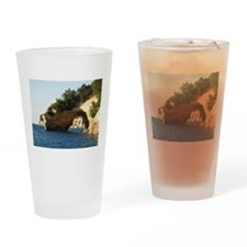 Pictured Rocks Drinking Glass