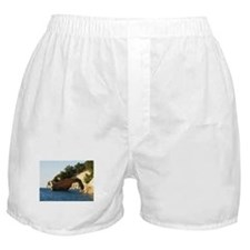 Pictured Rocks Boxer Shorts