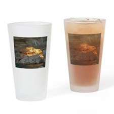 Pictured Rocks B Drinking Glass
