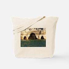 Pictured Rocks D Tote Bag