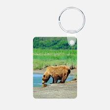 Alaskan Brown Bear Keychains