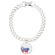 Slovenia Flag And Map Bracelet