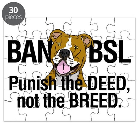 Ban BSL Puzzle