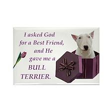 God Gave Me A Bull Terrier Rectangle Magnet (100 p