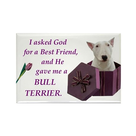 God Gave Me A Bull Terrier Rectangle Magnet