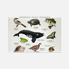 Georgia State Animals Rectangle Magnet