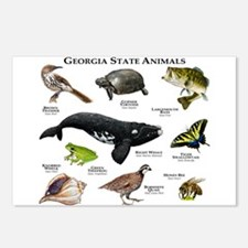 Georgia State Animals Postcards (Package of 8)