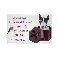 Bull Terrier (White & Black) Rectangle Magnet (10