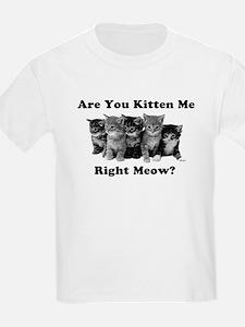 Dark Kitten Me Right Meow T-Shirt