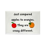 Apples Oranges Rectangle Magnet (100 pack)