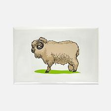 Sheep Rectangle Magnet