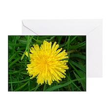 Dandelion Delight Greeting Cards (Pk of 10)