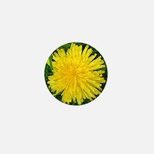 Dandelion Delight Mini Button