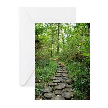 Stump Path (Pack of 6 cards)