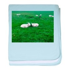 little lambs baby blanket