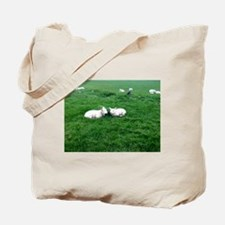 little lambs Tote Bag