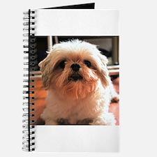 Shitzu Babie Journal