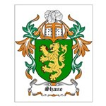 Shane Coat of Arms Small Poster