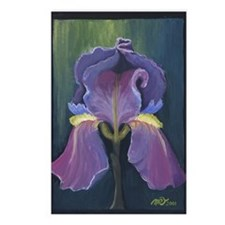 Bearded Iris Postcards (Package of 8)