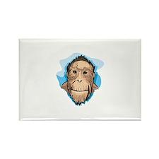 Monkey Rectangle Magnet