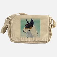 TriColor Messenger Bag