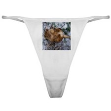African Lion Cub 2 Classic Thong