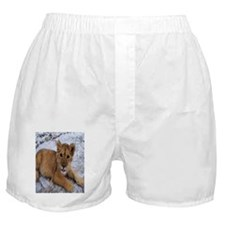 Mufasa Obama 1 Boxer Shorts