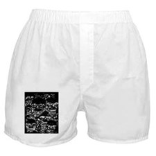 skulls darker ink inverted Boxer Shorts