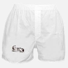 Retro Cat and Dog Boxer Shorts