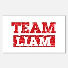 Team Liam Decal