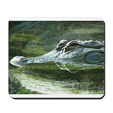 Alligator Photo Mousepad