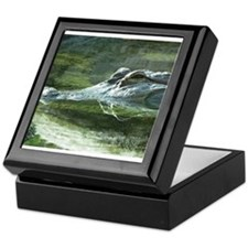 Alligator Photo Keepsake Box
