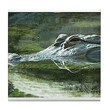 Alligator Photo Tile Coaster