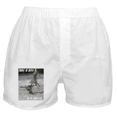 Help Fight Sock-M's cancer Boxer Shorts