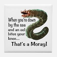A Moray Tile Coaster