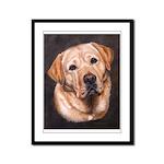 Yellow Male Labrador Portriat Framed Panel Print