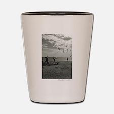 Unique Black and white Shot Glass