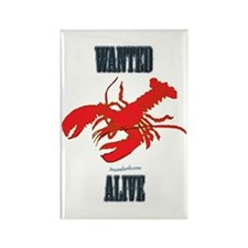 Lobster Wanted Alive Rectangle Magnet