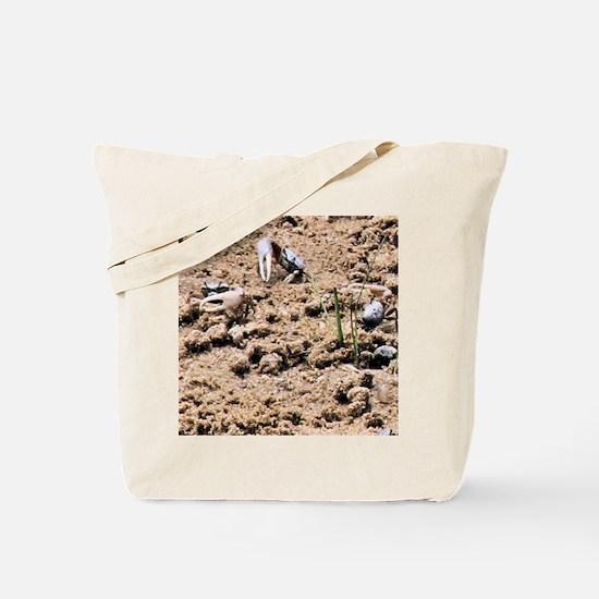 Fiddler Crabs Tote Bag