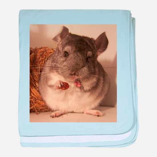 Lovely chinchillas baby blanket