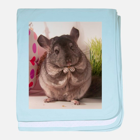 lovely chinchilla baby blanket