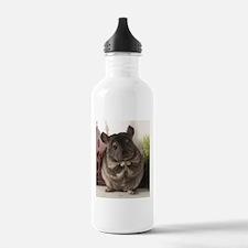 lovely chinchilla Water Bottle