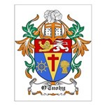 O'Tuohy Coat of Arms Small Poster