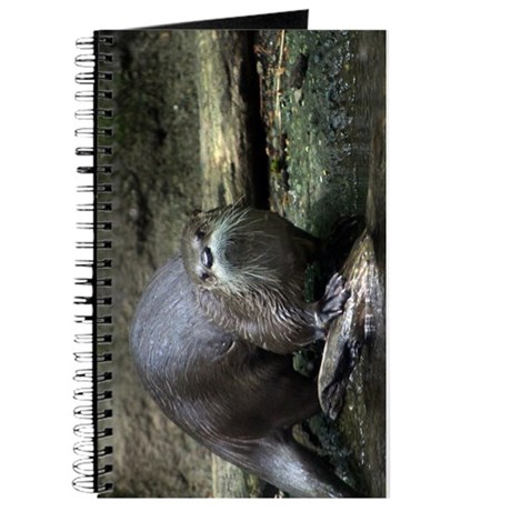 North American river otter.jpg Journal