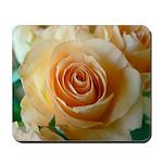 Apricot Colored Rose Mousepad