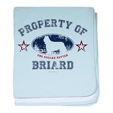 Briard baby blanket