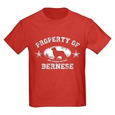 Bernese T
