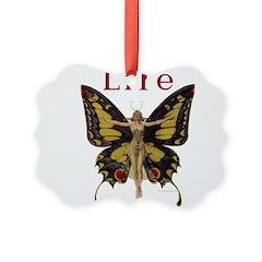 Leyendecker Butterfly_1010.jpg Ornament